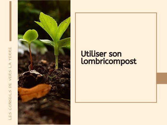 utiliser-son-lombricompost