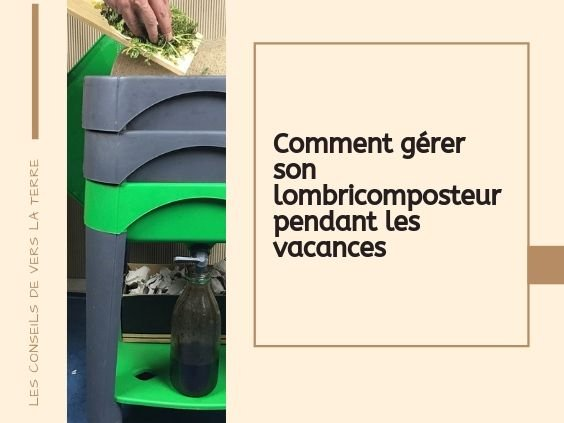 gerer_lombricomposteur_vacances