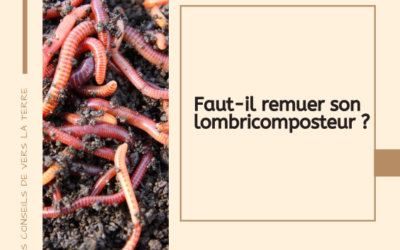 Faut-il remuer son lombricomposteur ?